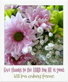 Jenny of ELEFANTZ: Give Thanks...