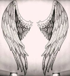 Angelic wings sketch -research study for my project Tattoo Drawings, Body Art Tattoos, Art Drawings, Drawings Of Angels, Wing Tattoos, Sketch Tattoo, Sleeve Tattoos, Tattoo Aigle, Angel Wings Drawing
