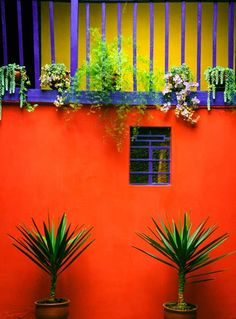 Beautiful Home Design and Color Blocking Aesthetics of Mexico - Latin America Mexican Interior Design, Mexican Designs, Color Interior, Beautiful Home Designs, Beautiful Homes, Garden Design, House Design, Patio Design, Mexican Garden