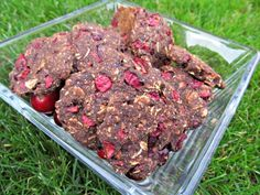 Carob Cranberry Oatmeal Cookies, I swear my dogs eat better than I do!
