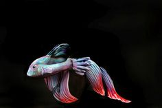 15 Body Paintings of Animals That Completely Hide the Humans - My Modern Met - Gesine Marwedel