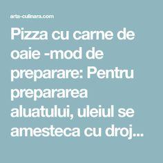 Pizza cu carne de oaie -mod de preparare: Pentru prepararea aluatului, uleiul se amesteca cu drojdia dizolvata in lapte, cu borsul si cu par