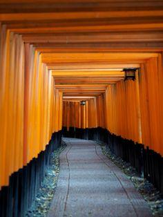 Fushimi Inari Taisha temple in Kyoto, Japan Travel Around The World, Around The Worlds, Fushimi Inari Taisha, Japan Photo, Temple, Sidewalk, Kyoto Japan, Jenni, Travelling