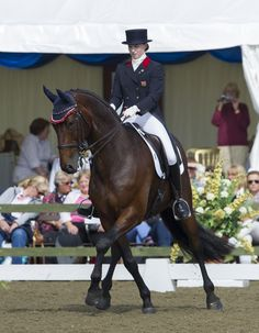 The Dressage Horse