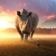 These Jaw-Dropping Photo Manipulations Imagine A World With Giant Animals – UltraLinx Giant Animals, Big Animals, Photoshopped Animals, Photoshop Images, Surrealism Photography, Mundo Animal, Wildlife Art, Photomontage, Surreal Art