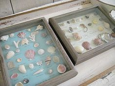 A cute way to display your beach findings :)