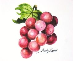 Red Grapes Fruit Print From Watercolor by judithbelloriginals