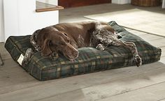 Just found this Large+Dog+Bed+-+Rectangle+Orvis+Dogs+Nest%26%23174%3b+--+Orvis on Orvis.com!