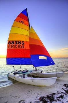 The Hobie Cat was the go to sail boat for those of us that grew up on Florida's Emerald Coast. This one is in Navarre Beach Florida.