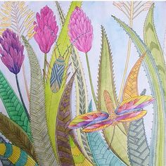 By @inksnaquarell #arttherapy #mandala #milliemarottafans #coloringbook…