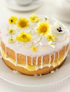 Lemon and elderflower drizzle cake