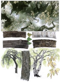 Did 'I ever mentioned that I like to draw trees? ...