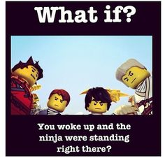 I would freak out!!!!!! THAT WOULD BE THE BEST THING EVER!!!!!!!! #ninjago