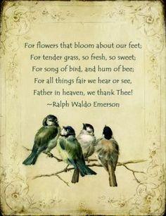 Thankful   Poem