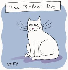 YES! When I kept trying to think of the kind of dog I would go for, I realized I was describing a cat. <3
