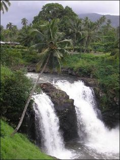 Togitogiga Waterfall, Samoa - they are so gorgeous to visit!