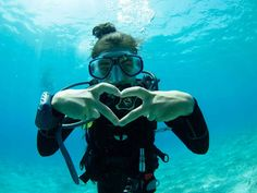 6 Reasons Divers Adore Bonaire and You Will Too--Read now on the PADI Blog