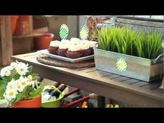 Party Planner: Time to Grow Birthday Party