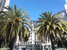 San Francisco on ehdottomasti yksi kauneimmista ja kiinnostavimmista kaupungeista Yhdysvalloissa ja maailmassa. Värikäs kulttuuri, ystävälliset ihmiset, kauniit maisemat ja ikoniset nähtävyydet valloittavat! Lisää tunnelmia blogissa! // San Francisco is for sure one the prettiest and most interesting cities the Usa and in the World. Colourful culture, friendly people, beautiful sceneries and iconic sights are worth experiencing! #sanfrancisco #california #usa #sanfran #sf #travel San Francisco, California, Lifestyle