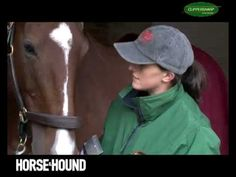 How to clip a horse with H&H: getting started - YouTube