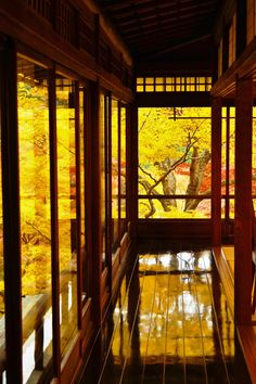 瑠璃光院、Ruriko-in temple Kyoto,Japan # picture background color nature leaves Japanese Landscape, Japanese Architecture, Japan Kultur, Imagen Natural, Bg Design, Japanese Interior, Japanese House, Mellow Yellow, Okinawa