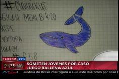 Juego De La Ballena Azul En Santo Domingo: Someten Varios Jóvenes Por Crear Perfiles Falsos Del Juego