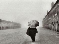 Rain & Mist by Rui Palha