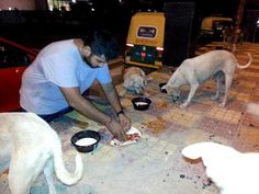 feeding stray dogs, Delhi feed a dog, Humans of New Delhi