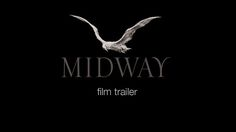 So beautiful so sad...  MIDWAY trailer : a film by Chris Jordan by Midway. The MIDWAY media project is a powerful visual journey into the heart of an stonishingly symbolic environmental tragedy. On one of the remotest islands on our planet, tens of thousands of baby albatrosses lie dead on the ground, their bodies filled with plastic from the Pacific Garbage Patch.