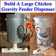 Build A Large Chicken Gravity Feeder Dispenser The Homestead Survival - Homestea. Build A Large Ch Keeping Chickens, Raising Chickens, Pet Chickens, Chickens Backyard, Urban Chickens, Gravity Feeder, Chicken Feeders, Chicken Coops, Chicken Lady