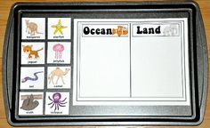 Ocean or Land Animal Sort Cookie Sheet Activity--The Ocean or Land Animal Sort Cookie Sheet Activity is a sea life, or ocean themed activity. In this cookie sheet activity, students sort animals by type: whether they live in the ocean, or live on land.