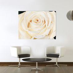 RE - Eleganza #artprints #interior #design #art #prints #fiori #flowers  Scopri Descrizione e Prezzo http://www.artopweb.com/categorie/floreali/EC17429