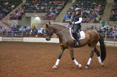 Paralympic dressage rider and 4-Star Parelli Professional Lauren Barwick giving a demo at the Future of Horsemanship Tour: www.parelli.com/2014-usa-events