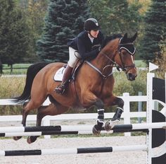 Peach and me on a show last week , it was perfect time so we got 2nd beacuse we went one second fraction after the perfect time- Allie