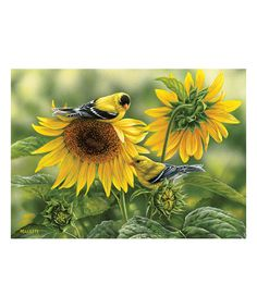 Outset Media Sunflowers & Gold Finches 1,000-Piece Puzzle by Outset Media #zulily #zulilyfinds