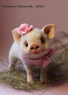 felted baby pigs - Google Search