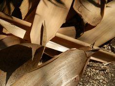 24 Ballet Shoes, Dance Shoes, Peeps, Peep Toe, Fashion, Maze, Dancing Shoes, Moda, Ballet Flats