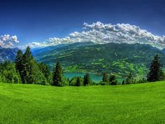 Blue and green nature wallpaper