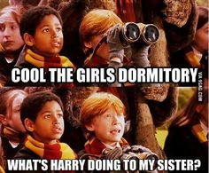 Discovered by Find images and videos about funny, harry potter and ron on We Heart It - the app to get lost in what you love. Harry And Ginny, Harry Potter Ships, Harry Potter Jokes, Harry Potter World, Yer A Wizard Harry, Humor Grafico, Mischief Managed, Hogwarts, Decir No