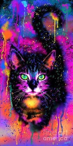 Rainbow Painted Tabby Cat Art Print by Nick Gustafson Colorful Animal Paintings, Colorful Animals, Cute Animals, Cat Paintings, Cat Wallpaper, Animal Wallpaper, Cute Animal Drawings, Cute Drawings, Rainbow Painting