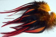 Hey, I found this really awesome Etsy listing at https://www.etsy.com/listing/73969844/laced-rooster-saddle-hackle-feathers