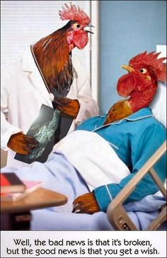 Doctor Cluck