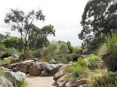 canberra botanic gardens images - Google Search