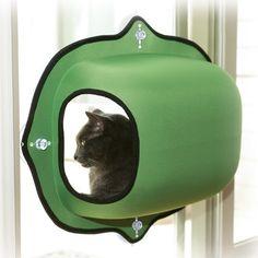 K&H Manufacturing EZ Mount Window Pod Kitty Sill - Window Perches & Cat Shelves at Hayneedle Crazy Cat Lady, Crazy Cats, Cat Window Bed, Cat Ideas, Diy Pet, Chat Kawaii, Gatos Cat, Cat Shelves, Little Pet Shop