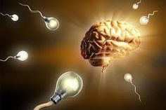 Simple Guide To Brain Enhancement