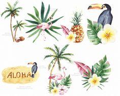 Tropical Summer Clipart png element Toucan by SpringArtShop