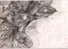 Art GCSE - Flower Biro by LuckyWhale.deviantart.com