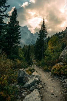 """faerypotter: Tetons are seriously the best. ccouilla via /r/EarthPorn ift.tt/1riUVEx """""""