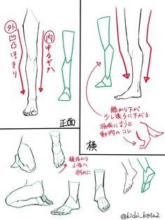 Feet legs