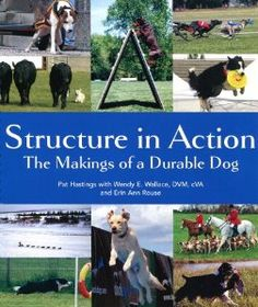 Structure in Action: The Makings of a Durable Dog: Pat Hastings, Wendy E Wallace DVM cVA, Erin Rouse: 9780967841441: Amazon.com: Books